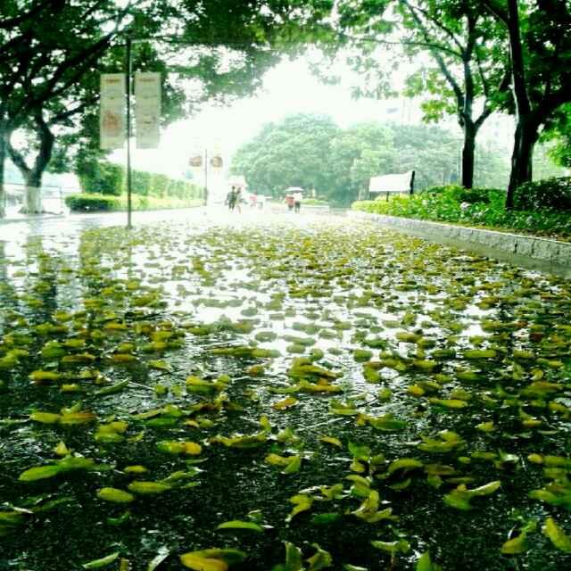 《大雨后的风景》/aiyepeixing